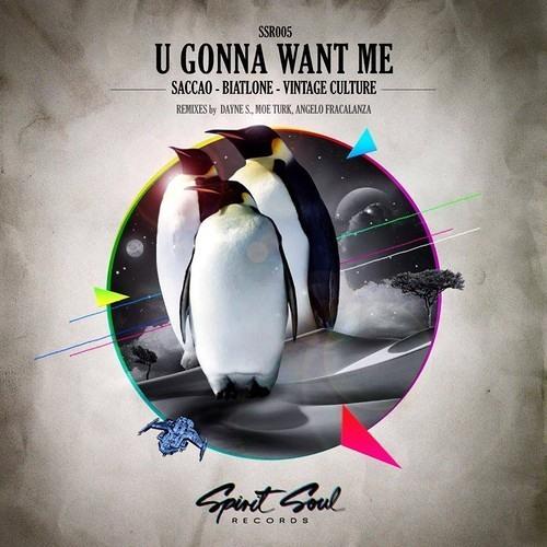 Saccao, Biatlone, Vintage Culture - U Gonna Want Me (Dayne S Remix)