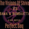 Visions Of Shiva Vs Obama & Bambaataa - Perfect Day (X - Ray Bootleg)