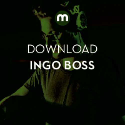 Download: Ingo Boss 'This Punks You'