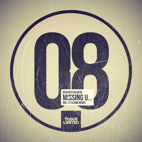 Roberto Palmero - Missing U