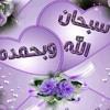 Download انشودة قمر سيدنا النبي  للمنشد مصطفى عاطف.mp3 Mp3