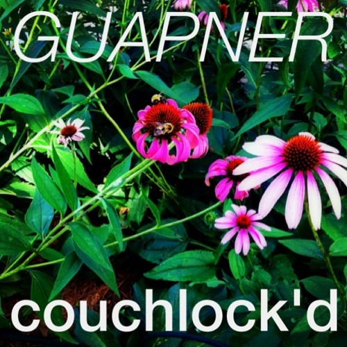 Couchlock'd