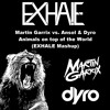 Martin Garrix vs. Ansol & Dyro - Animals on top of the world (EXHALE Mashup)