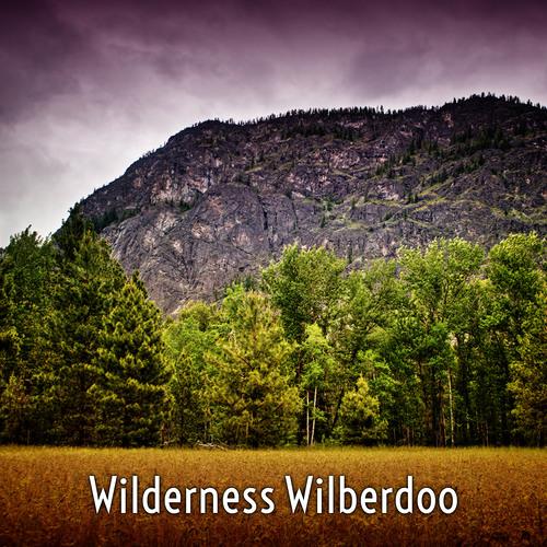 Wilderness Wilberdoo