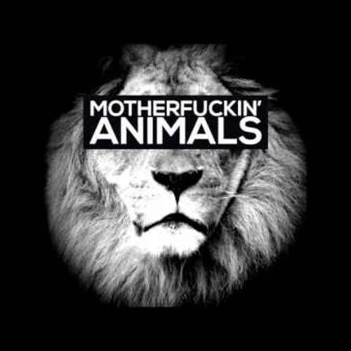ANIMALS (MAOR LEVI REMIX) [EXCLUSIVE TEASER]