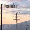 2013 (rev.) - Oppenheimer