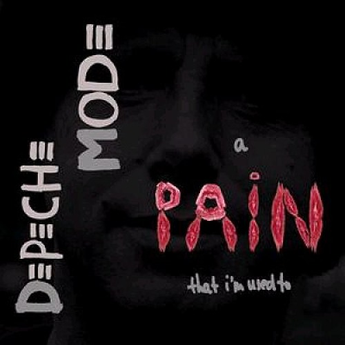 Brian Fadeway -  A Pain That I'm Used To (Depeche Mode cover)