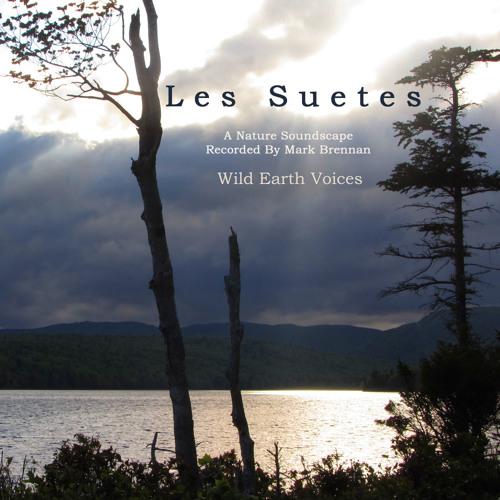 Les Suetes, Album Sample
