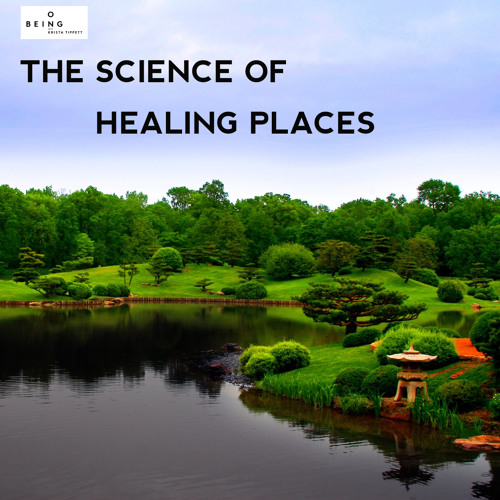 Esther Sternberg — The Science of Healing Places
