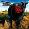 Blink 182 - Josie