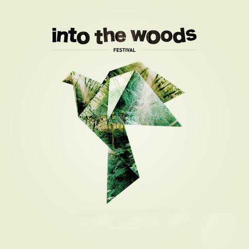 Jan Van Kampen @ Into the Woods Festival 2013-09-14