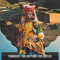 Thundercat - For Love I Come (Tree Bootleg)