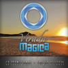 Set oficial da Virada Mágica 2014 - parte 2 progressive house