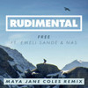 Rudimental - Free ft. Emeli Sandé & Nas (Maya Jane Coles Remix) mp3