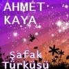 Ahmet-Kaya-safak-turkusu-saclarina-yildiz-dusmus-koparma-anne