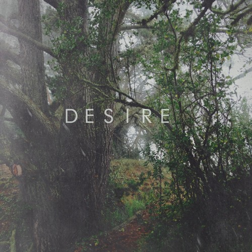 Running In The Fog - Desire