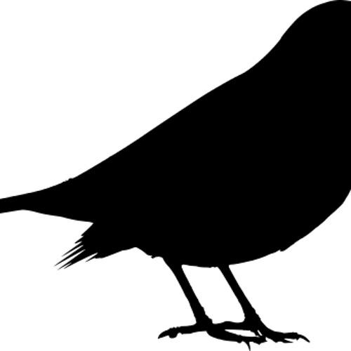 disquiet0095-discussamongst - blackbird