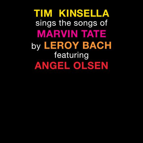 """Tim Kinsella """"Idolize"""""""