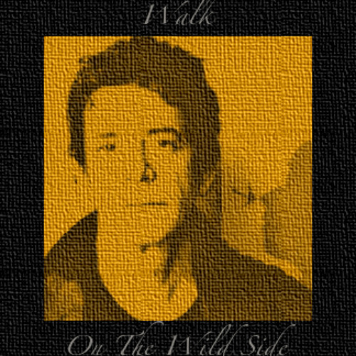 Walk On The Wild Side. Cover & Toad's Nest Tribute to Lou Reed (please read info)