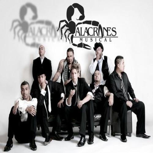 ALACRANES MUSICAL Fue Su Amor (Balada)
