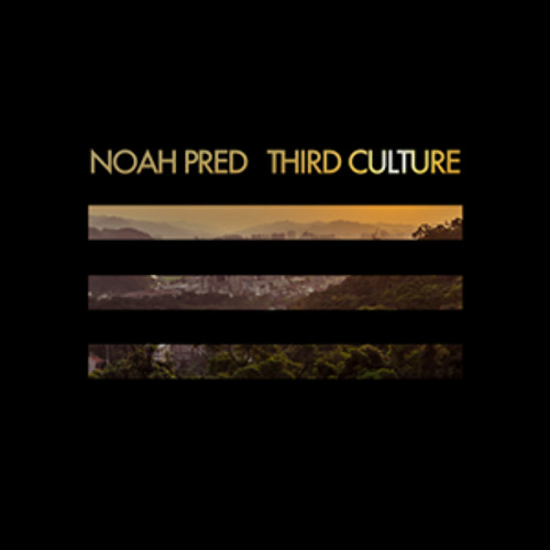 Free Track: Noah Pred 'Left Bank'