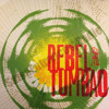 SalsaEntrance©Radio PRESENTS: Rebel Tumbao - The Story (2013)NEW CD