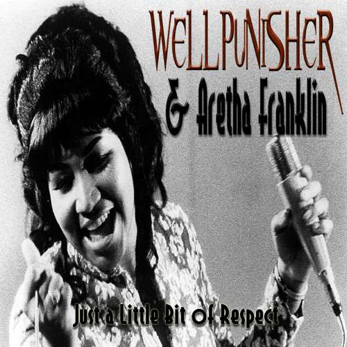 Wellpunisher & Aretha Franklin - Little Bit Of Respect (original mix)