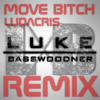 Move Bitch (Get Out The Way) Ludacris ft. Mystikal | Luke Basswoodner Remix