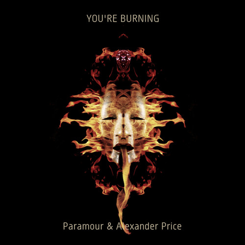 Paramour & Alexander Price - You're Burning (Paolo Gozzetti Dubworx Remix)