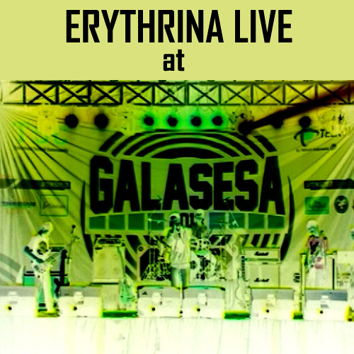 Erythrina - Panic Station (Muse Cover Live)