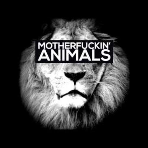Rodrigo Mix Producer 2014 Feat Animals Maor Levi (Private 2014)