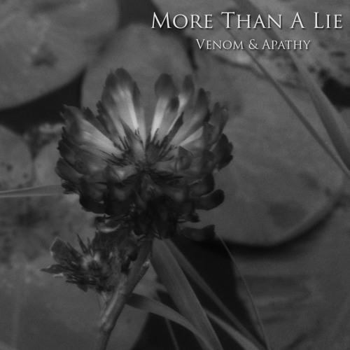 More Then A Lie