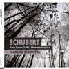 Schubert, Musical Moment n.3 Allegro moderato (D780)