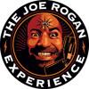 The Joe Rogan Experience #279 Duncan Trussell, Brian Redban