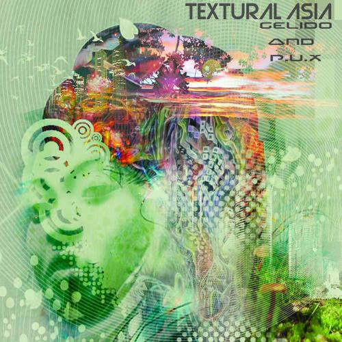 Textural Asia - Gelido & P.U.X
