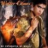 WALTER OLMOS MEGAMIX - ((Dj JeRo® N.MIX - 2013)) No Apto Para Cardiacos . Portada del disco