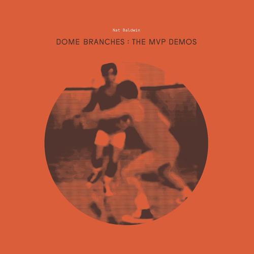 nat baldwin - dome branches: the mvp demos (album preview)