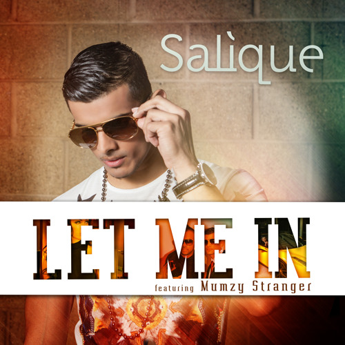 Salique feat Mumzy Stranger - Let Me In - Radio Edit MP3