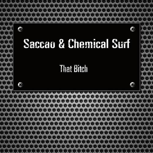 Saccao & Chemical Surf - Slap that bitch (Vijay & Sofia Zlatko Remix)SNIPPET
