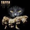 Trippin - feat. Matt Monday