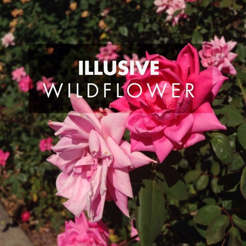 Sunlight (Wildflower) Feat. Eva