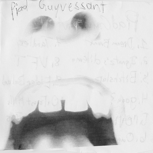 Piad Guyvessant - Xylem And Phloem