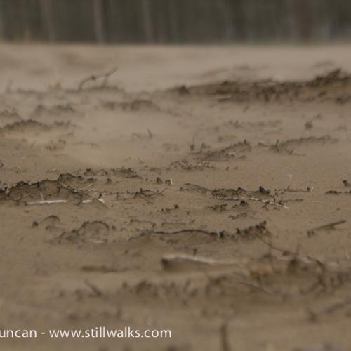 High Winds On Swansea Beach