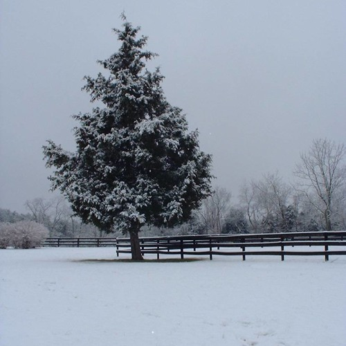 Chance of Snow Tonight