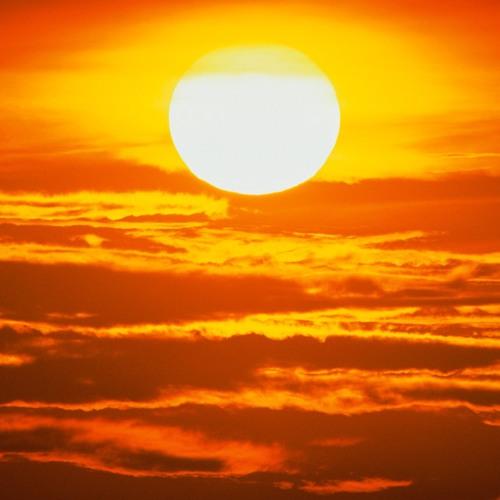 TURFER .sunny Days...