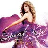 Taylor Swift - Speak Now (cover)