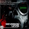 Ericles Silva ft Alok - EmergencY (Weverson Levis Mashup) mp3