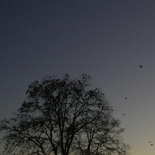 [gterma025] : Aqua Dorsa - Strange Clouds / Moonlit Night