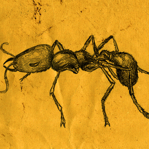Sibu & Joe Nagall feat Arthur Teller - Ant Queen