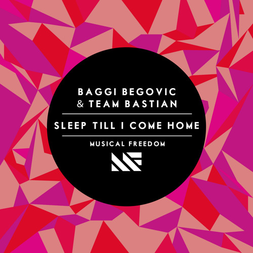 Baggi Begovic & Team Bastian Sleep Till I Come Home (Original Mix)